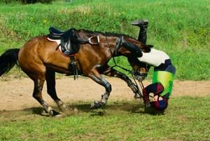 Падение с лошади - как это делать правильно