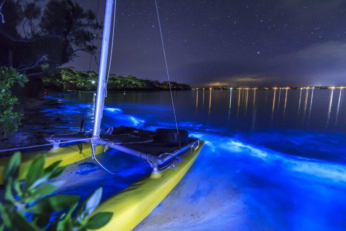 Светящийся планктон в Пуэрто-Рико